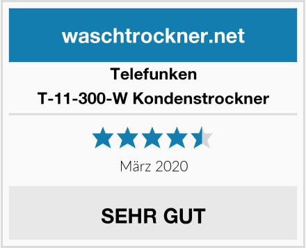 Telefunken T-11-300-W Kondenstrockner Test